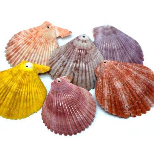 Drilled Shell Pendants, 6pcs,  2 inch, Mixed Colors,     Beach Pendants -B815
