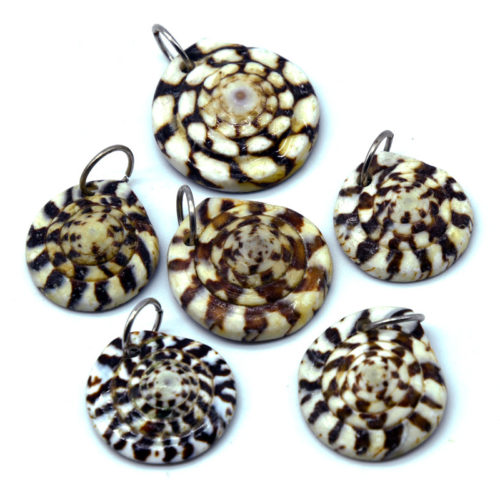 Shell Pendants,  6pcs, 24x5mm,  Round Shell Disc, Focal Pendant -P225